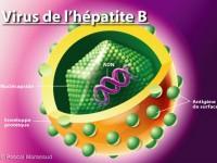 L'hépatite B !